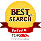 Best SEO Reseller Company