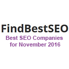 Best SEO Companies for November 2016
